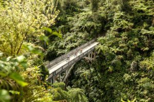 Whanganui National Park - Guide for Backpackers