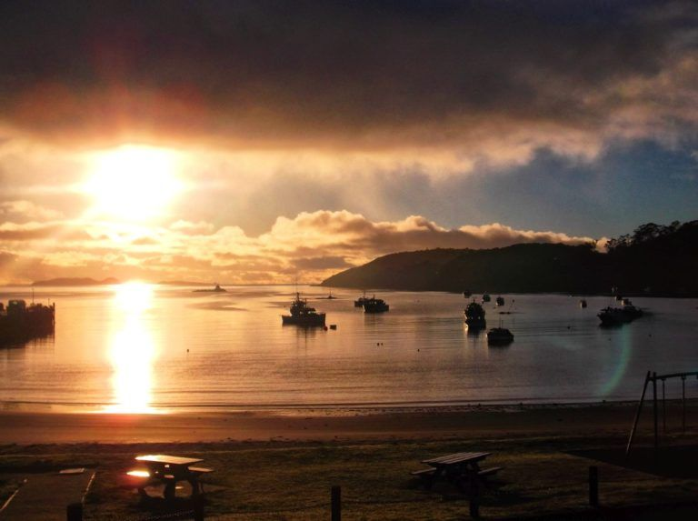 Stewart Island - Guide for Backpackers