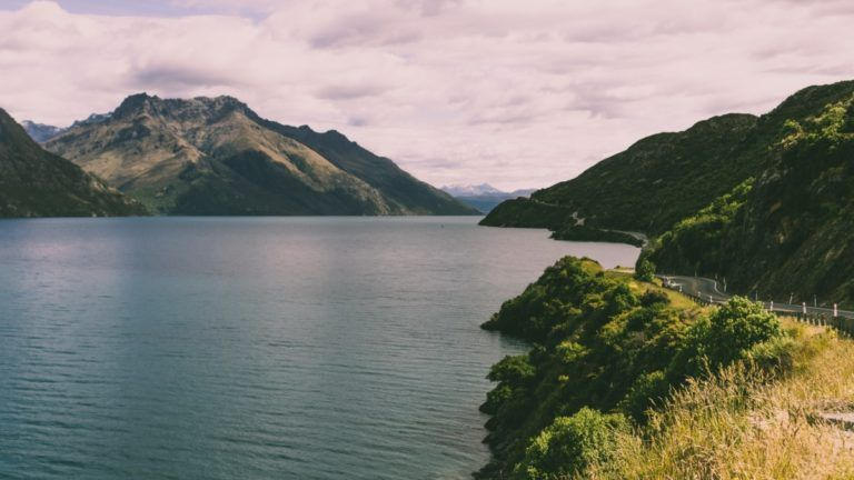 How to Drive in New Zealand