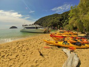 Nelson Tasman & Golden Bay - Guide for Backpackers