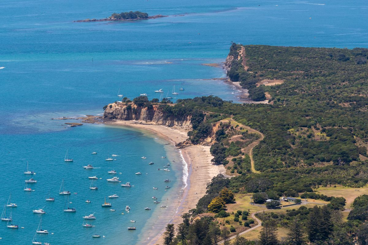 Waiheke Island - Guide for Backpackers