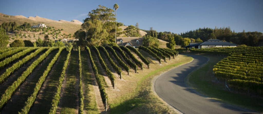 9 Great Winery Tours in New Zealand