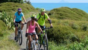 10 Great Bike Trails on the North Island