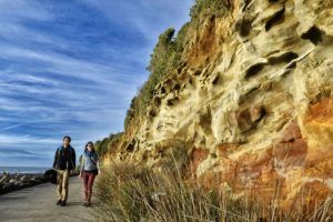 8 Wonderful Walks in New Plymouth