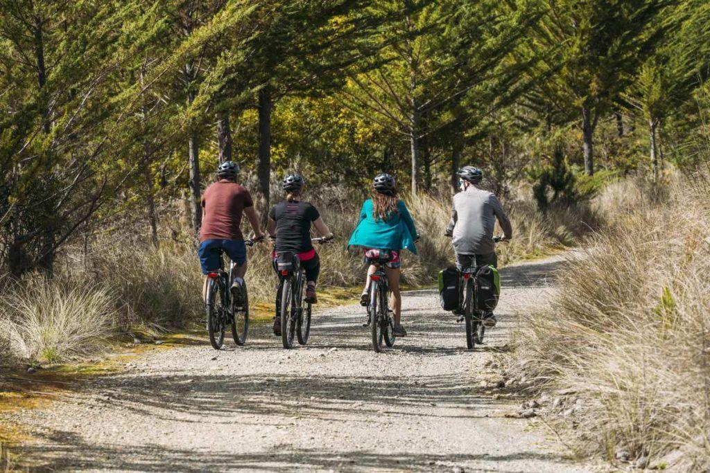 Mountain Biking in Nelson Tasman