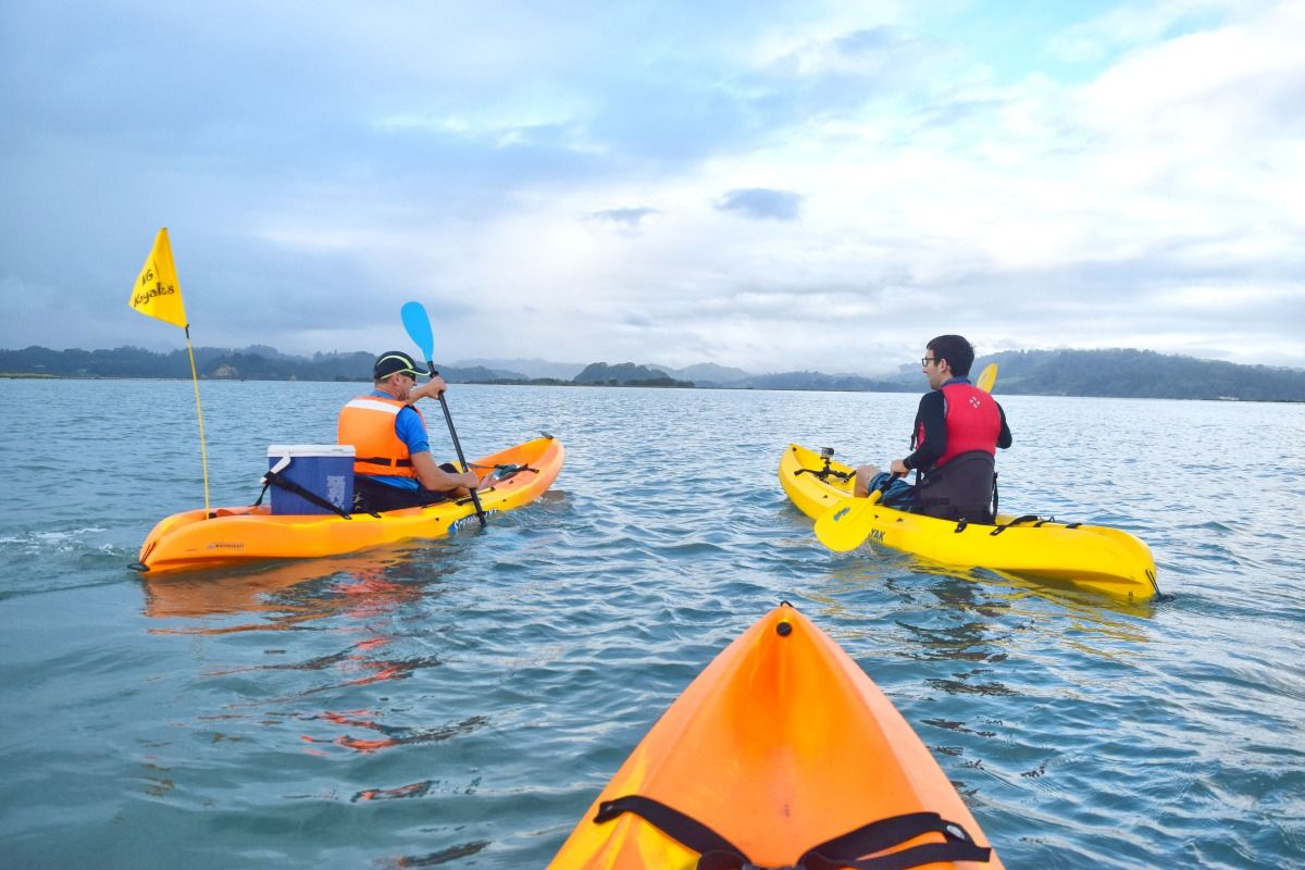10 Islands to Kayak to From Auckland