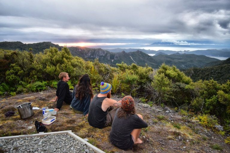 Great Barrier Island - Guide for Backpackers
