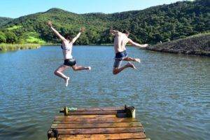 New Zealand Gap Year: Use a Working Holiday Program or Do It Yourself?