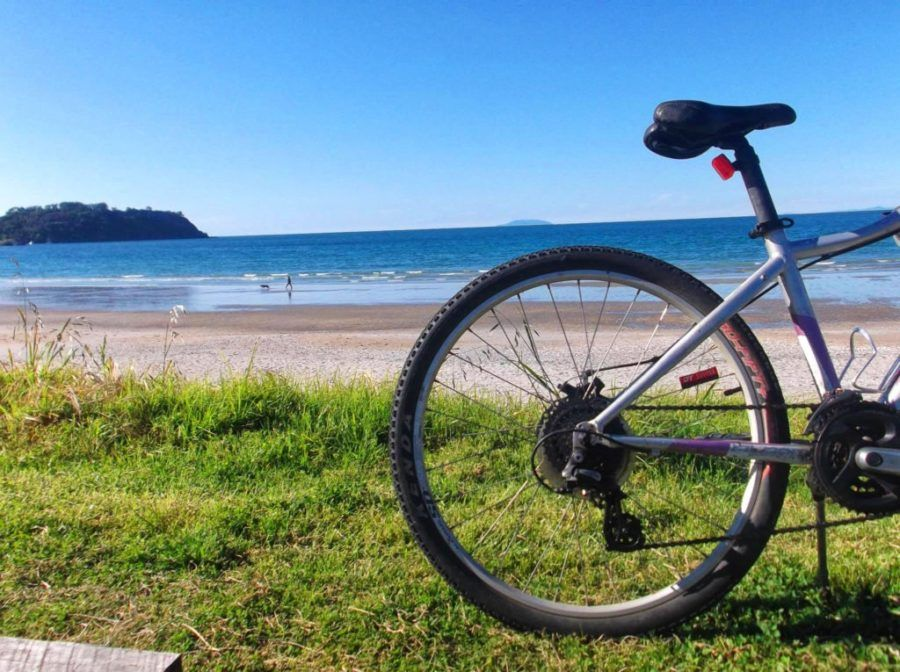 Mountain Biking in Hawke's Bay