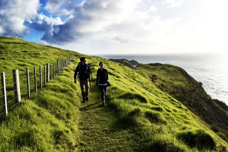 Coromandel Adventures: Going as North as You Can Go