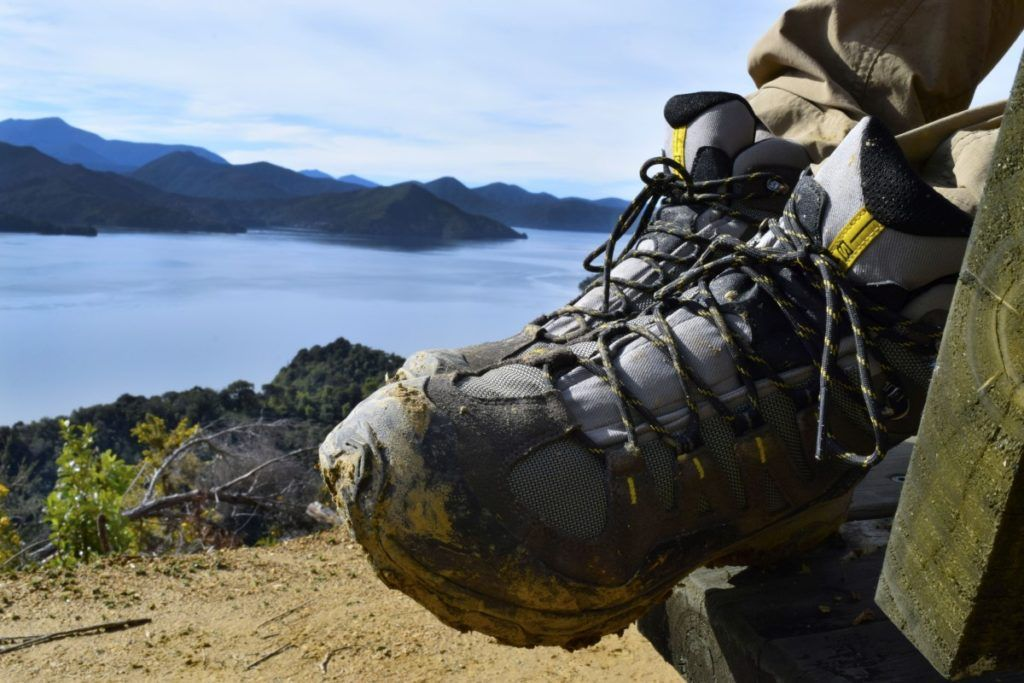 12 Awesome Hikes in Picton