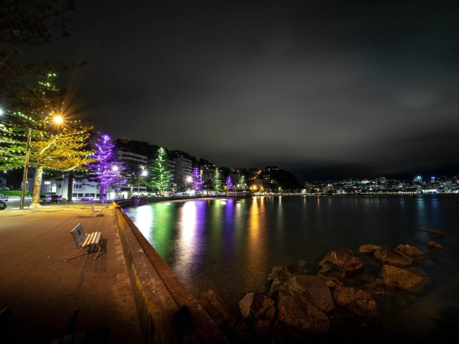 The Budget Accommodation Guide to Wellington City
