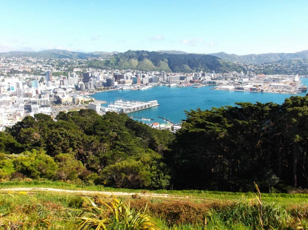 Where to Camp in Wellington