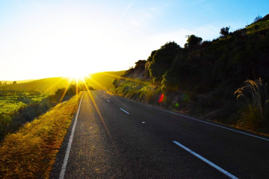 The 14 Golden Rules of Driving in New Zealand