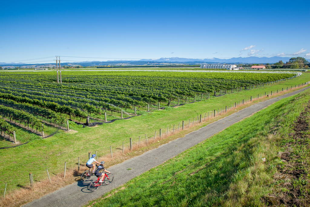 24 Nelson Wineries on the Nelson Wine Trail