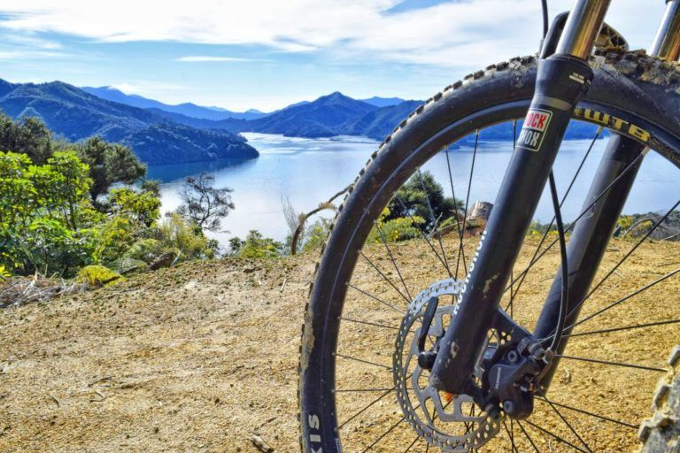 Mountain Biking in Marlborough