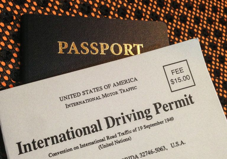 Why You Need an International Driving Permit for New Zealand