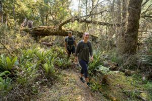 The Complete Guide to the Paparoa Track