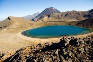 North Island in One Week: New Zealand Road Trip Itinerary
