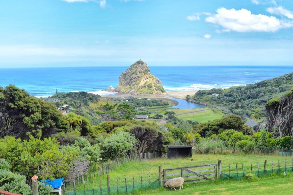 Where to Find Black Sand Beaches in Auckland