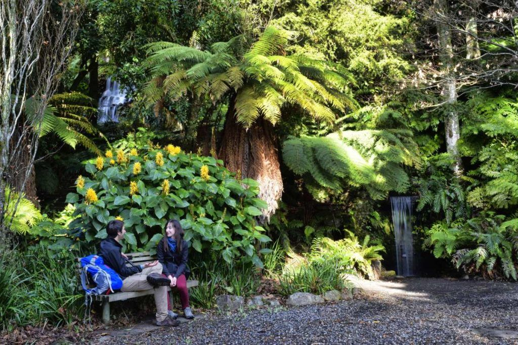 10 New Plymouth Must-Dos