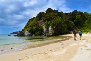 5 Stewart Island Must-Dos