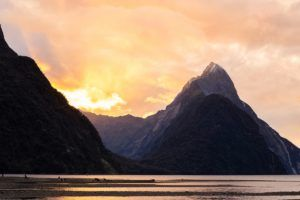 5 Milford Sound Must-Dos
