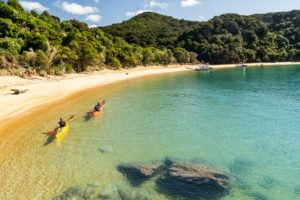 6 Must-Dos in the Abel Tasman National Park