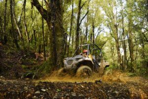 5 Greymouth Must-Dos