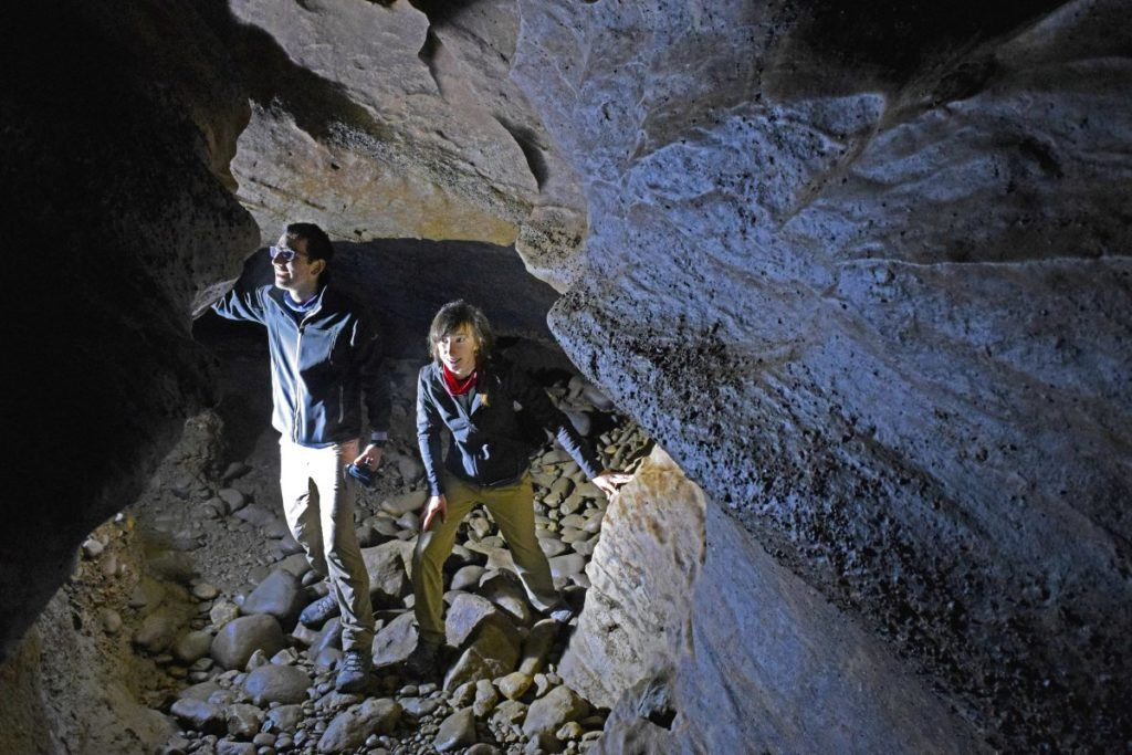 The Best Glow Worm Caves in New Zealand