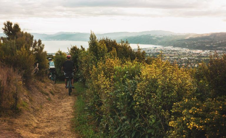 11 Excellent Things to Do in the Hutt Valley