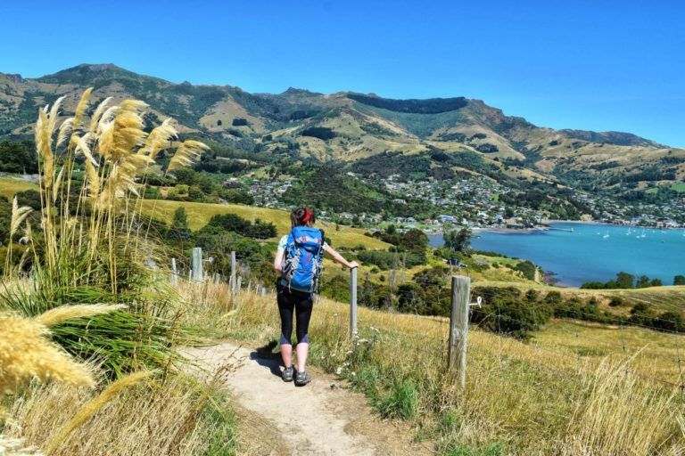 10 Free & Cheap Things to Do in Akaroa