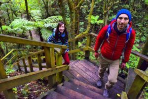 9 Must-Do Walks in Porirua
