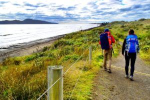 5 Super Things to Do in Paekakariki