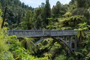 10 Unforgettable Things to Do in the Whanganui National Park