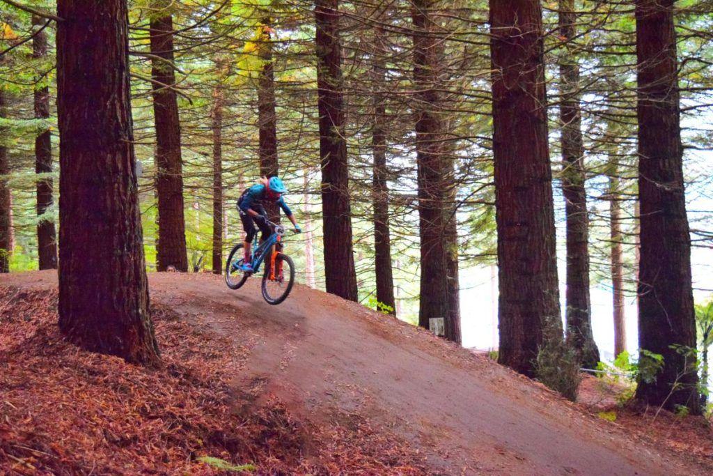 10 Must-Do Bike Trails in Rotorua