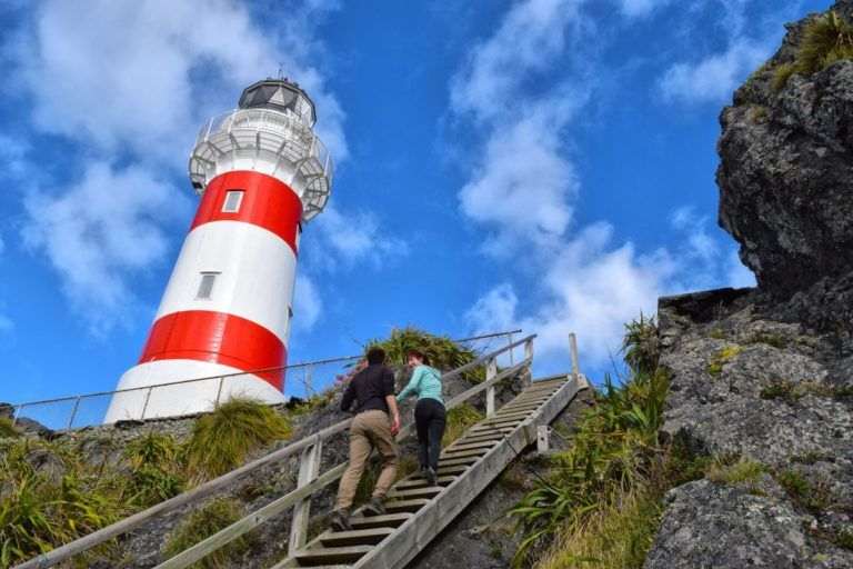 Cape Palliser Road Trip - Day 253