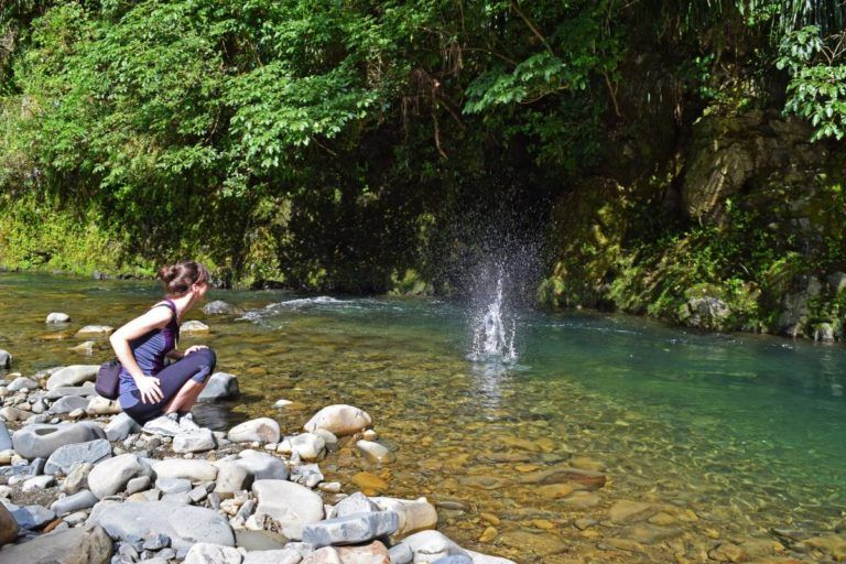New Zealand's Most Underrated Scenic Route: The Waioeka Gorge - Day 278, Part 1