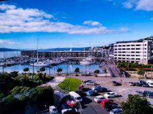 The Best Car Rental Companies in Wellington