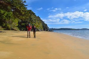 5 Amazing Day Trips from Invercargill