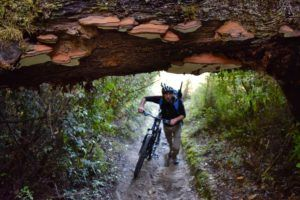 5 Best Bike Trails in Oxford