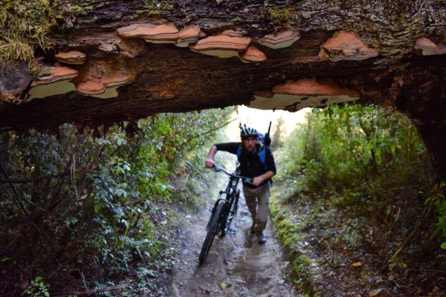5 Best Bike Trails in Oxford