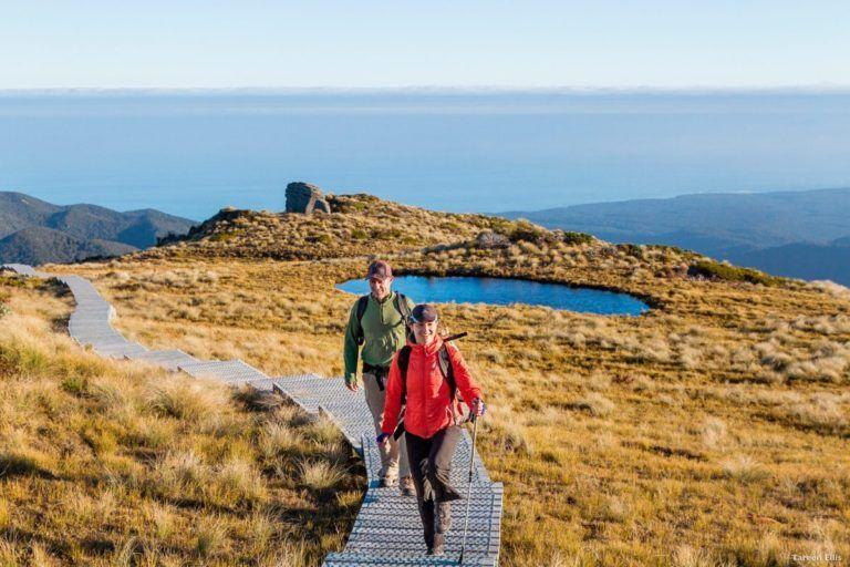 Guide to the Hump Ridge Track Great Walk