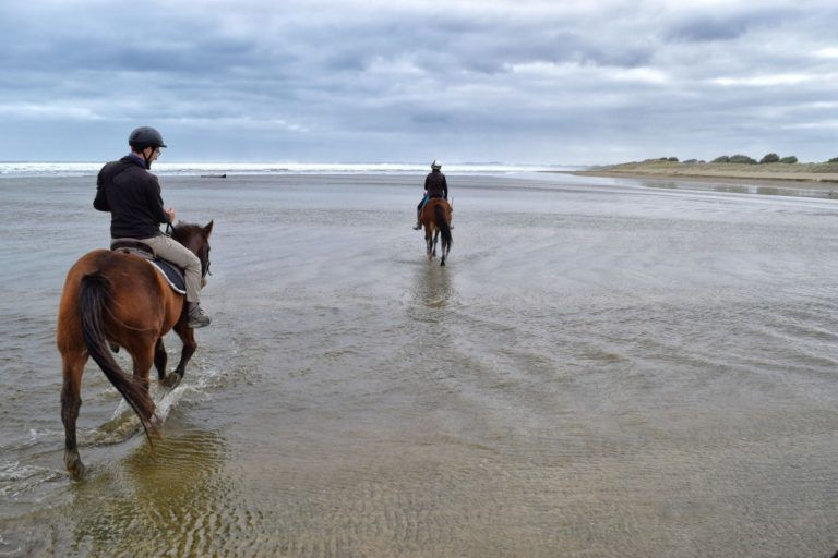 Ninety Mile Beach Horse Trek - Day 358