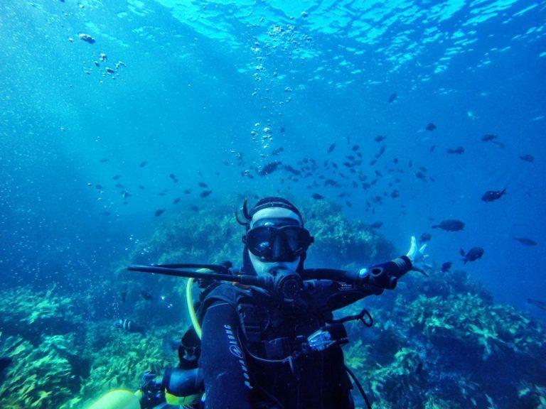 Scuba Diving in Paihia - Day 354