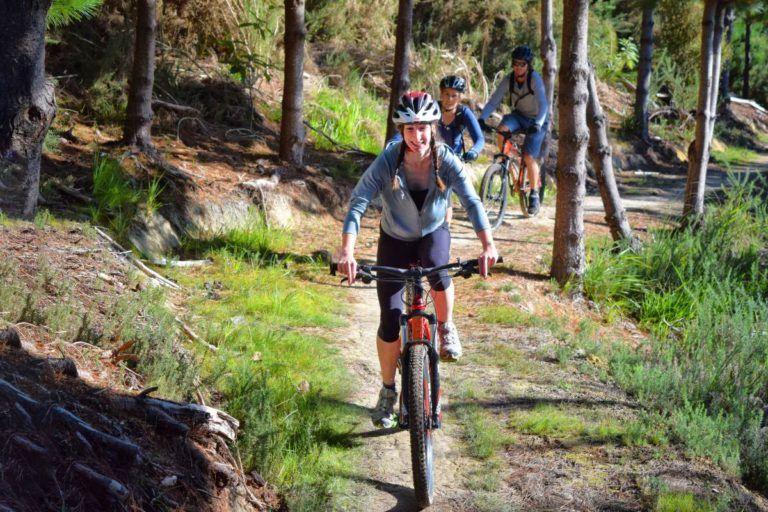 Mountain Biking in Paihia - Day 351