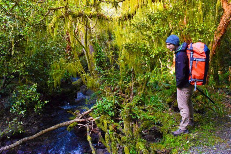 6 Best Walks in Gore