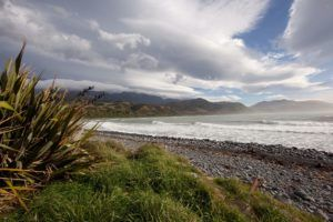 5 Best Walks in Kaikoura