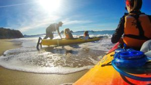 10 Coromandel Beaches You Can't Miss