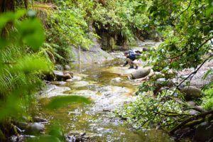 10 Must-Do Stops Between Gisborne & Wairoa